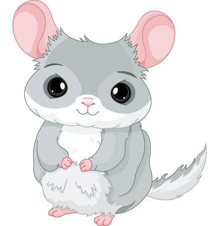 Illustration of lovely grey chinchilla