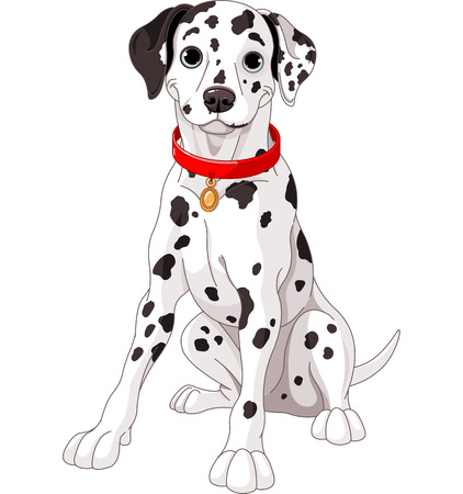 dalmatier: Illustratie van een schattige Dalmatische hond die een rode kraag