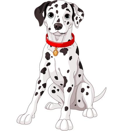 cute: Ilustración de un perro dálmata lindo que lleva un collar rojo Vectores
