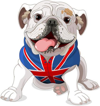 Bulldog Anglais portant un manteau avec le symbole du drapeau anglais