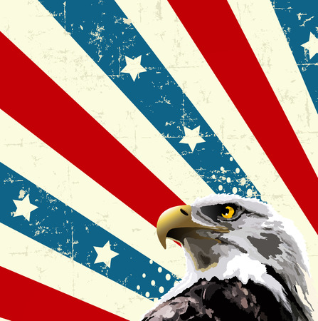 Bald eagle in front of an American flag design