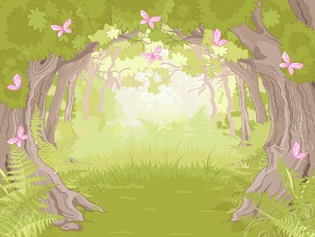 Belle Glade dans la forêt magique Illustration