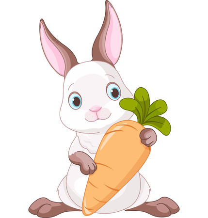 Cute bunny holding a large carrot  Vector