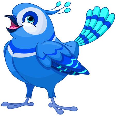 bluebird: Illustration of very cute bluebird