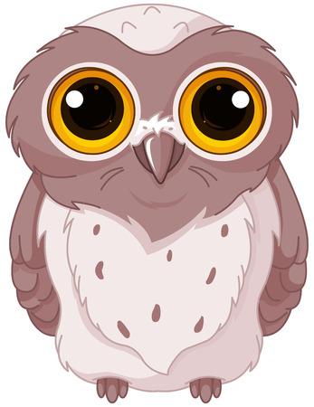 owlet: Ilustraci�n de mochuelo se queda mirando con los ojos abiertos