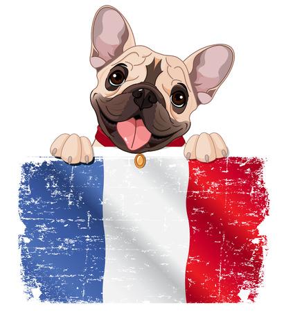 Illustration of French bulldog fan holds French flag
