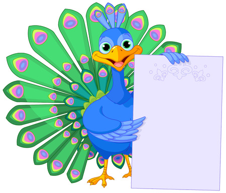 Illustration of peacock is holding a placard with open beautiful tail  Vector
