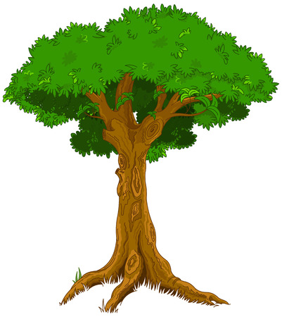 huge tree: Illustration of majestic tree Illustration