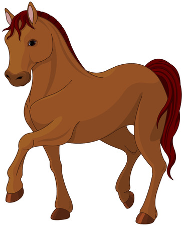 young animal: Illustration of purebred chestnut horse