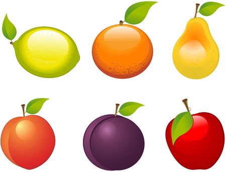 Set of six different fruits Vector