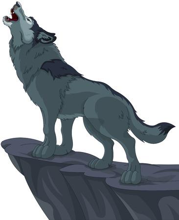 wilkołak: Ilustracja wycie wilka, który stoi na klifie Ilustracja
