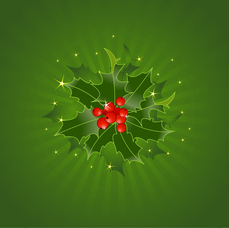 ornament: Christmas Holly On Green Background Illustration