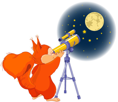 red squirrel: Illustration of very cute squirrel is watching into telescope Illustration