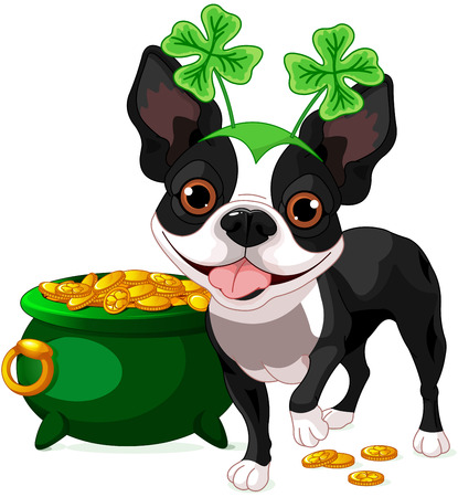 st  patrick: Illustration of cute Boston Terrier celebrates Saint Patrick Day