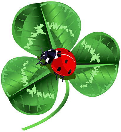 Three leafed clover and ladybug in the center of the screen for St. Patrick's Day