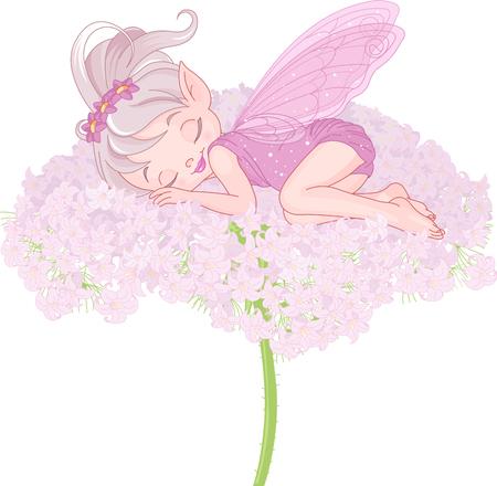 hadas caricatura: Ilustración de lindo durmiendo Pixy hadas Vectores