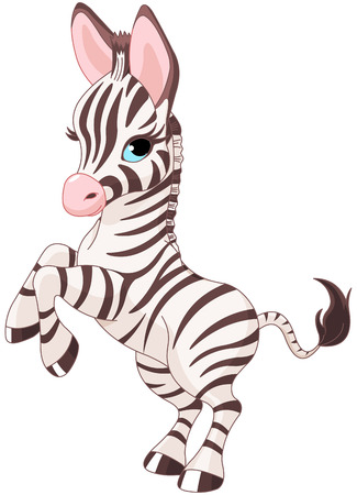 sketching: Illustration of very cute baby zebra