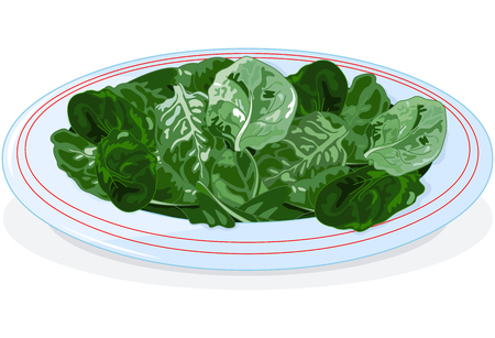 spinach: Illustration of plate of spinach