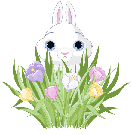 crocus: A cute Easter bunny sits in the crocus bouquet Illustration