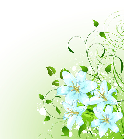 white lilly: Beautiful green spring background with bunch of Lilly Illustration