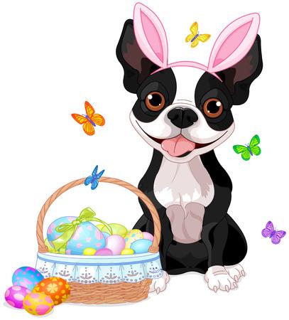 Cute Boston terrier near basket full of eggs Vector