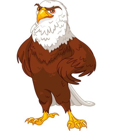 proud: Illustration of proud American eagle