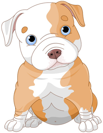 bull dog: Illustration of cute Pitbull puppy Illustration