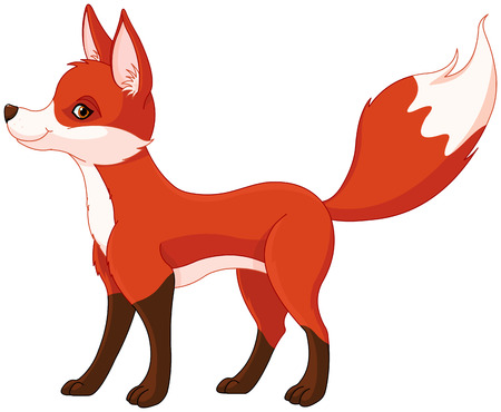 Illustration of very cute red fox