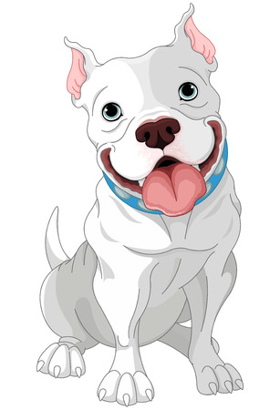Illustration of cute Pit-bull Ilustrace