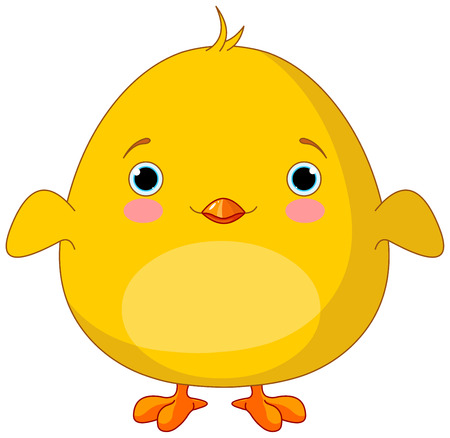 poult: Illustration of very cute chick