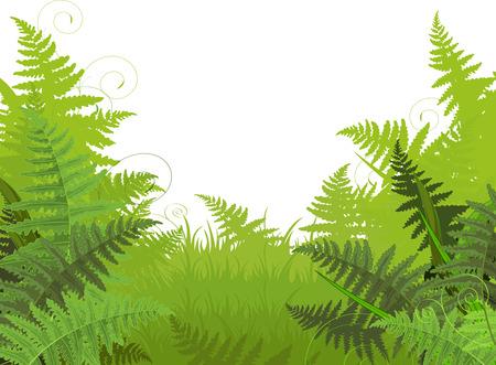 Illustration of fern meadow background