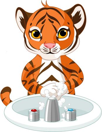 washing: Illustration of little tiger washing hands