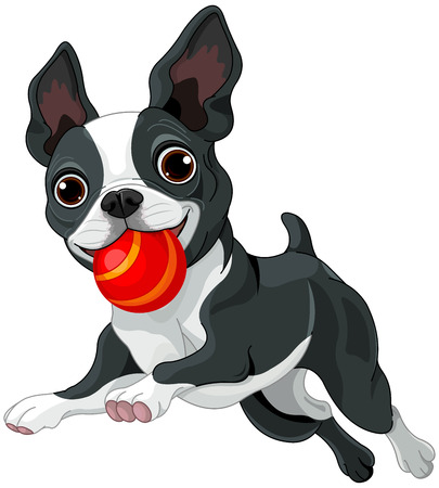 Illustration of Boston terrier running with ball