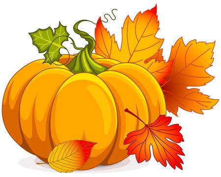 calabaza caricatura: Ilustración de la calabaza y de las hojas de otoño