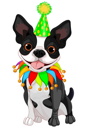 dog costume: Illustration of cute Boston terrier celebrating