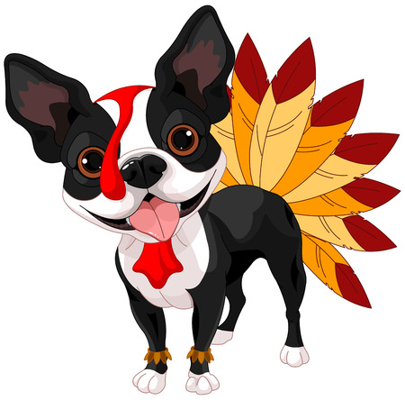 dog days: Ilustración de lindo terrier de Boston celebra Acción de Gracias