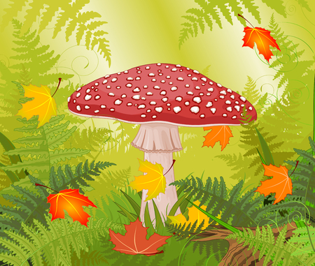 Illustration of amanita on autumn background Illusztráció