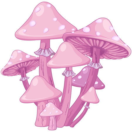 fairy toadstool: Illustration of magic toadstools