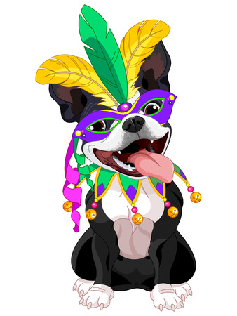 boston terrier: Illustration of Boston terrier wearing Mardi Gras costume