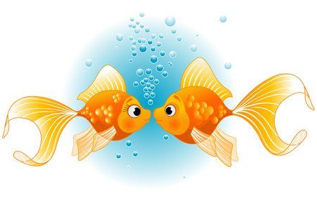 Two Gold Fishes in love before kiss