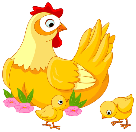 mommy: Illustration mother hen with its baby chicks