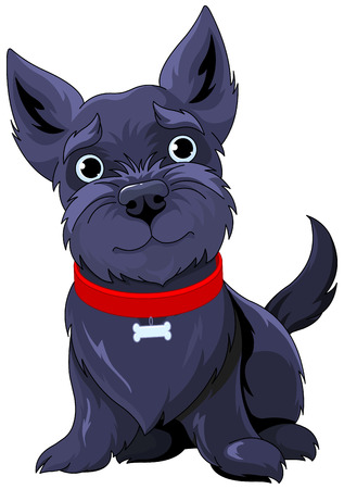 Illustration of very cute Scotch Terrier 向量圖像