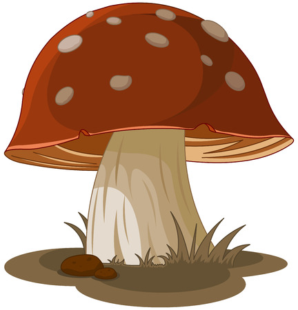 Illustration of magic mushroom