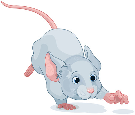 grey hair: Illustration of cute Wonderland mouse is running