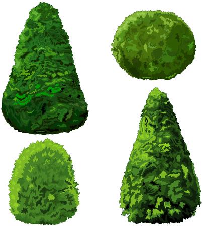 arboles caricatura: Ilustración del conjunto de arbustos y cipreses