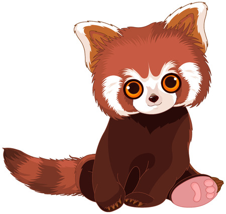 Illustration of cute red panda
