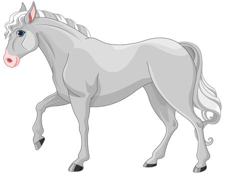 Illustration of beautiful grey horse Illustration