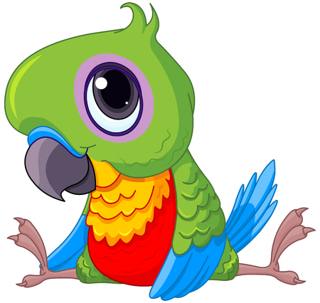 parakeet: Illustration of cute baby parrot