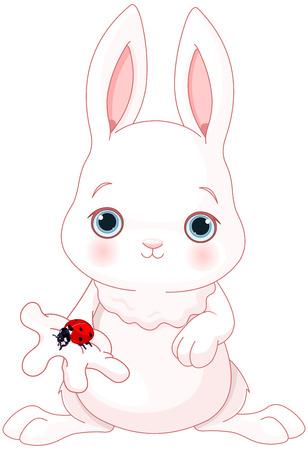 Illustration of cute white bunny holds ladybug Illustration