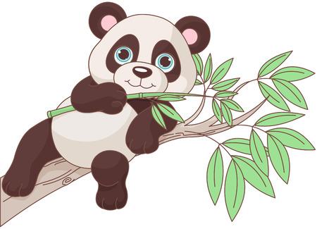 귀여운 팬더의 그림은 나뭇 가지에 앉아있다.